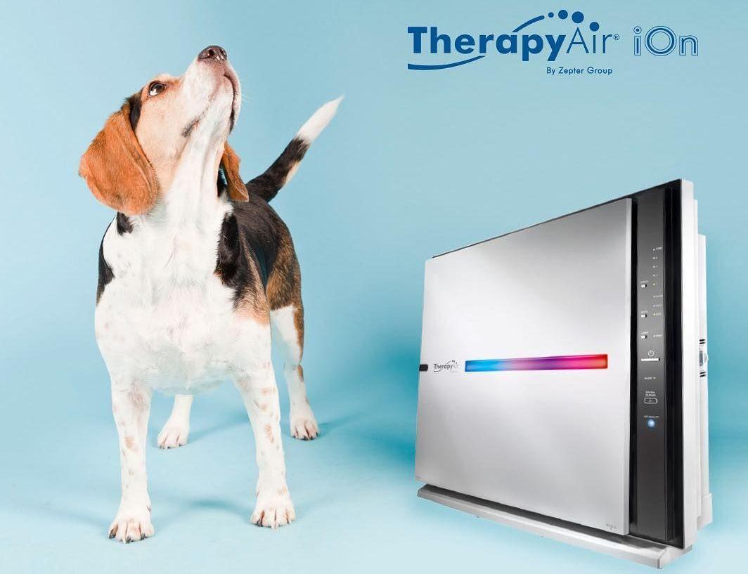 Презентация Системы очистки воздуха от Цептер - prezen vozduh - Презентация Системы очистки воздуха от Цептер